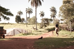Boy riding the horse around his farm no Triângulo Mineiro