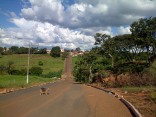 The hills of Carmo do Paranaiba