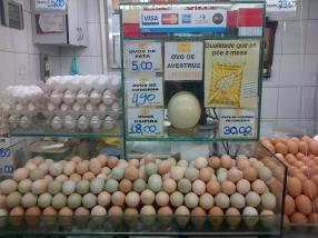 Do you like green eggs and ham